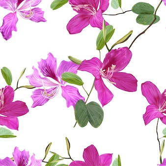 バウヒニア花のシームレスなパターン