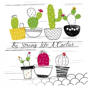 Be strong like a cactus
