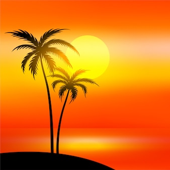 Beach scene with sunset and palm tree