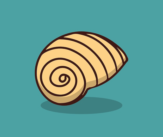 Beach shells in summer