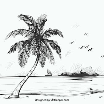 Beach sketch background with palm tree