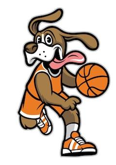 白で隔離ビーグル犬のバスケットボール選手