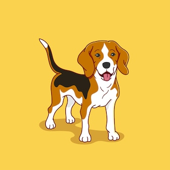 Beagle dog illustration