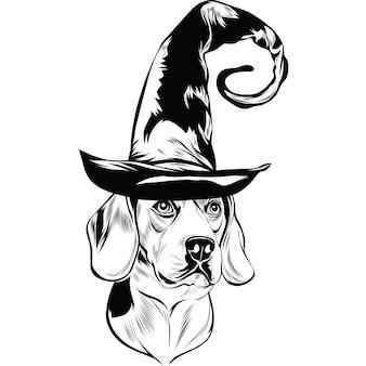 할로윈 마녀 모자를 쓴 비글견