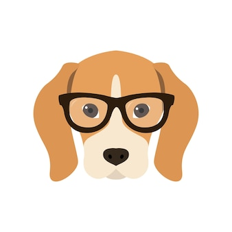 Beagle in glasses
