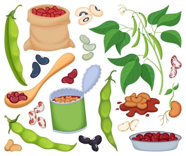 白い背景の上の食品イラストの豆.i