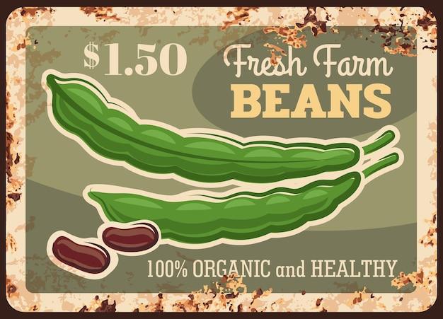 Beans rusty metal plate, vegetables farm market food