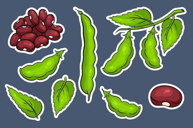 Набор фасоли. свежая зеленая фасоль и красная фасоль. наклейки в мультяшном стиле. векторная иллюстрация для дизайна и декора.