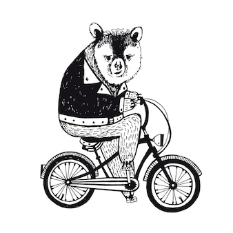 Bear on the bicycle. vintage illustration