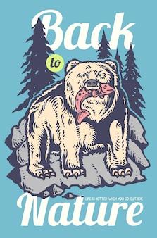 岩の上にサーモンを食べるクマ