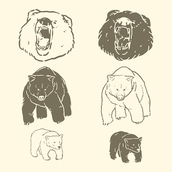 Bear hand drawn vector illustrations