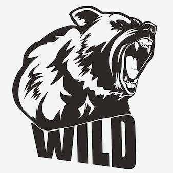 Bear head cartoon, grizzly mascot hand drawn.