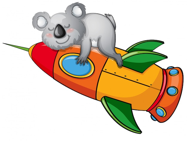 Bear on a rocket
