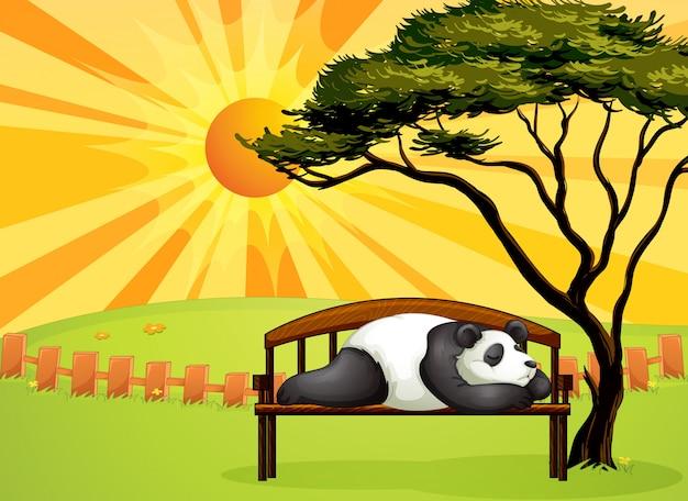 A bear sleeping on a bench