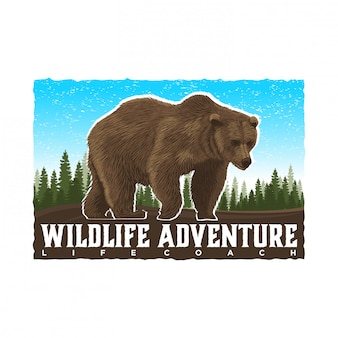 Bear wildlife adventure and outdoor