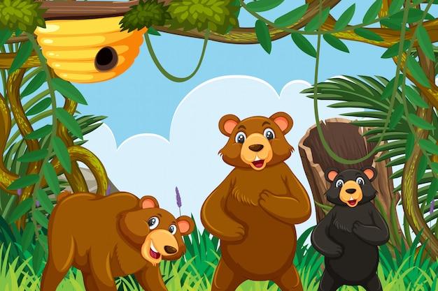 Bears in jungle scene