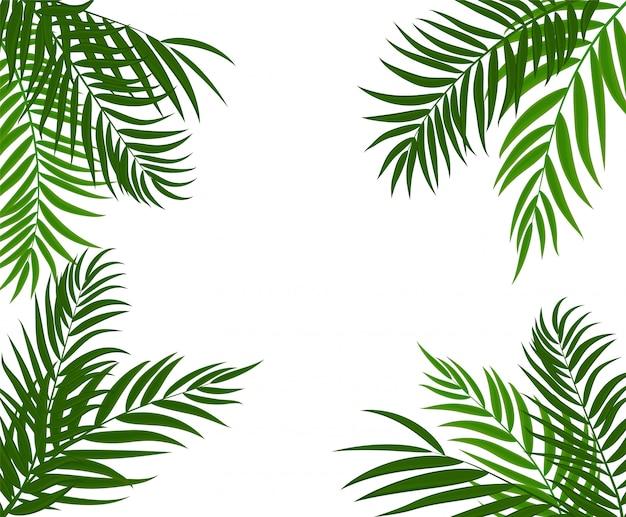 Beautifilヤシの木の葉シルエット