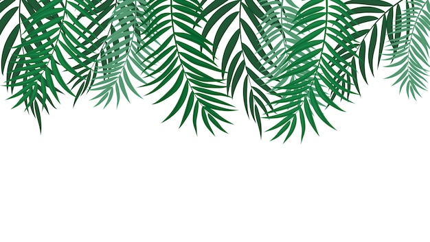 Beautifilヤシの木の葉シルエット背景