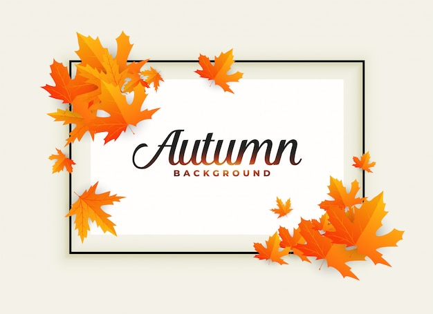 Beautiful autumn background with text space