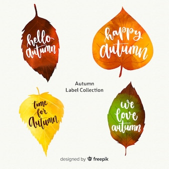 Beautiful autumn label collection
