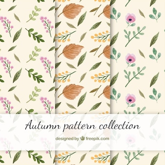 Beautiful autumn pattern collection