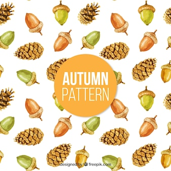 Beautiful autumnal pattern of  watercolor pinecorns and acorns