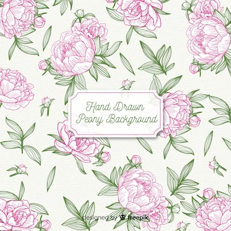 Beautiful background concept of peony flowers