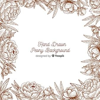 Beautiful background of peony flowers