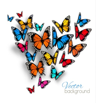 Beautiful background with colorful butterfly.