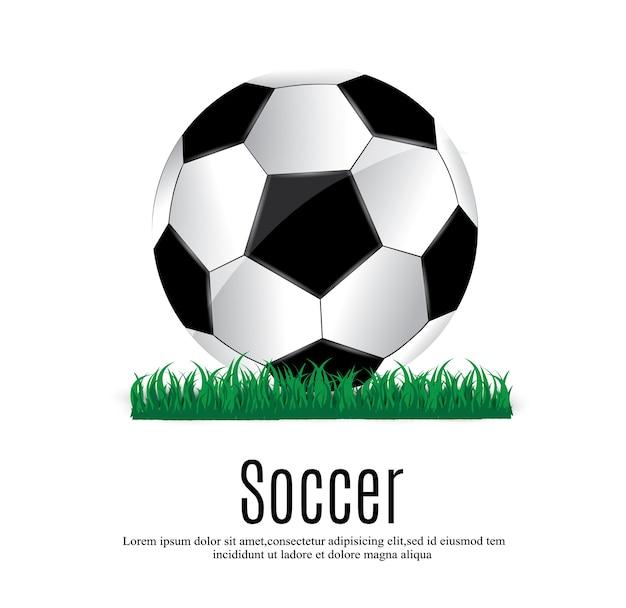 美しいボールと緑の草