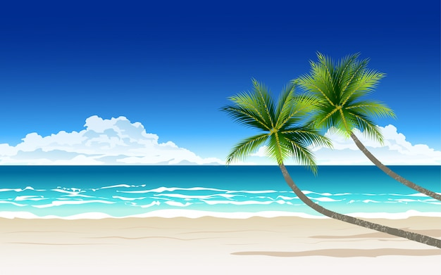 Красивый пляж в солнечный день с двумя пальмами