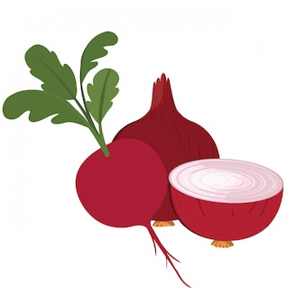 Beautiful beet and egg onion isolated icon
