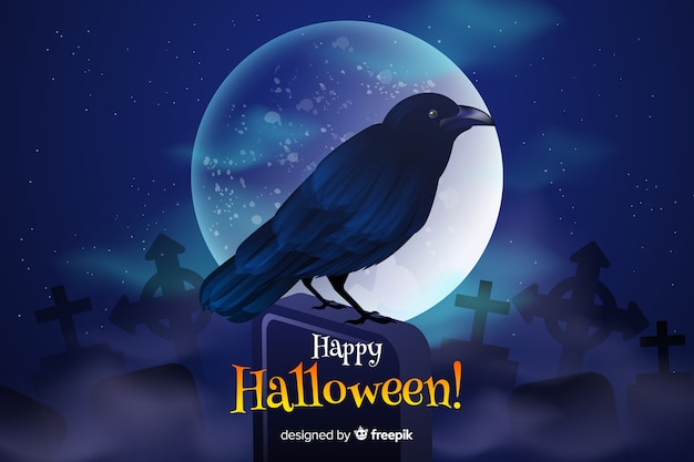 Beautiful black raven on a full moon night halloween background