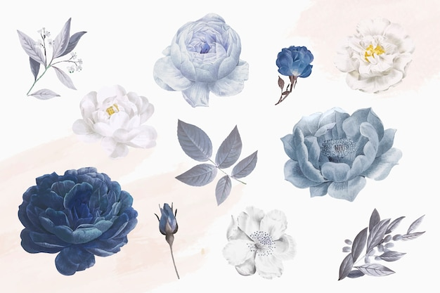 Beautiful blue rose objects