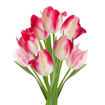 흰색에 튤립의 아름 다운 꽃다발입니다.