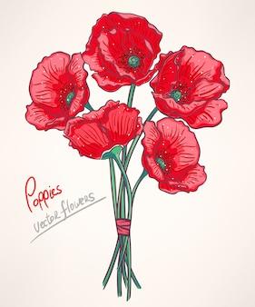 ベージュ色の背景に5つの赤いケシの美しい花束