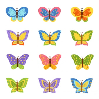 Beautiful and bright collection of different butterflies.