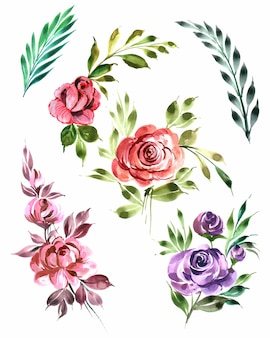 Bellissimo mazzo di fiori set disegno ad acquerello