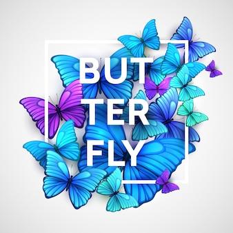 美しい蝶のイラスト