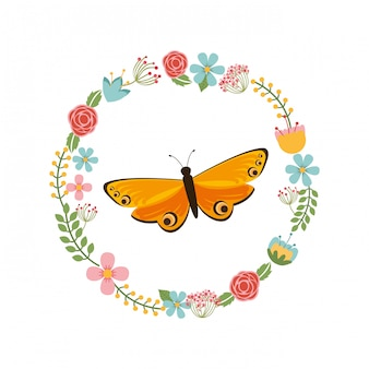 Beautiful butterfly frame