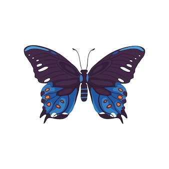 손으로 그린 아름 다운 나비 그림 곤충