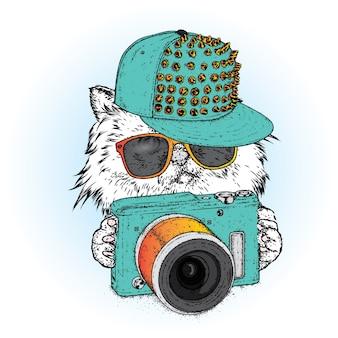 Красивый кот в кепке и с фотоаппаратом
