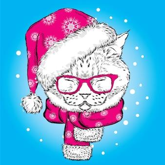 クリスマスの帽子とメガネの美しい猫。