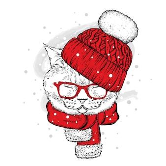 冬の帽子と眼鏡の美しい猫。