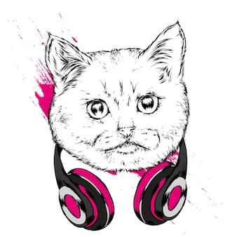 Красивый кот в наушниках