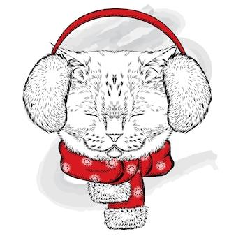 冬のヘッドフォンで美しい猫。