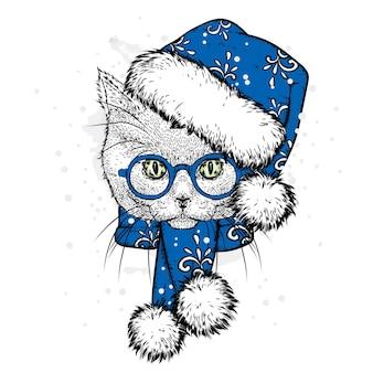 Красивый кот с елочными украшениями и одеждой