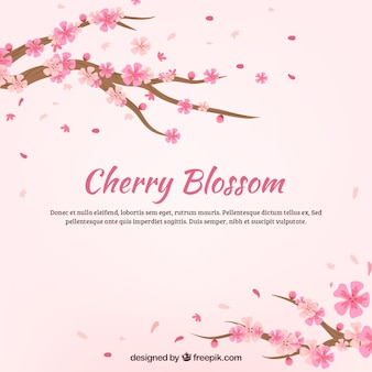 Beautiful cherry blossom background