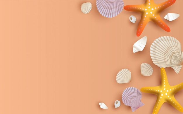 Beautiful clams on the beach sand background