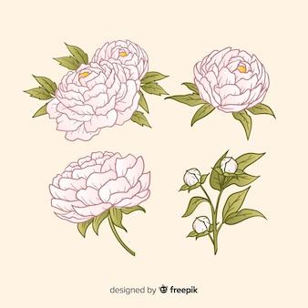 손에 모란 꽃의 아름 다운 컬렉션 그린 스타일